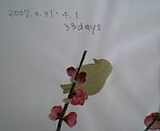 画像 087.jpg